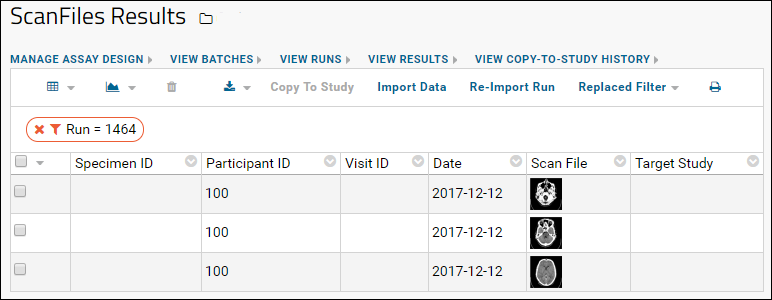 Linking Assays with Images and Other Files: /Documentation