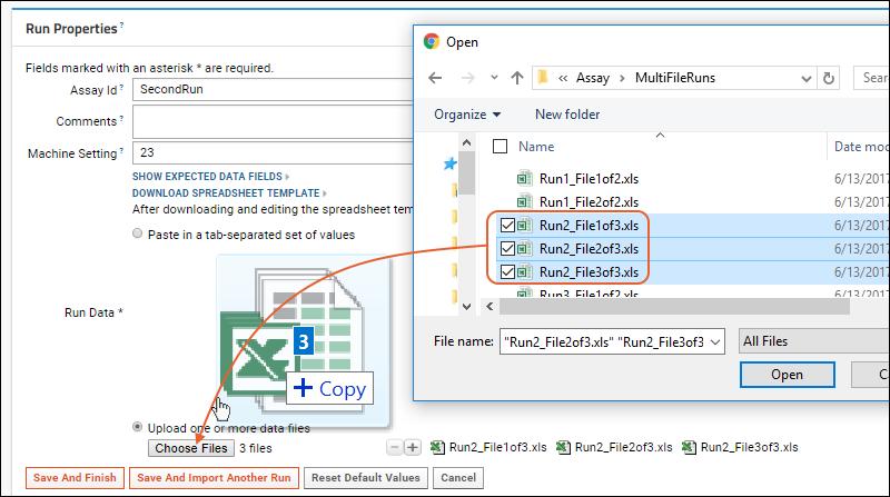 Multi-File Assay Runs: /Documentation